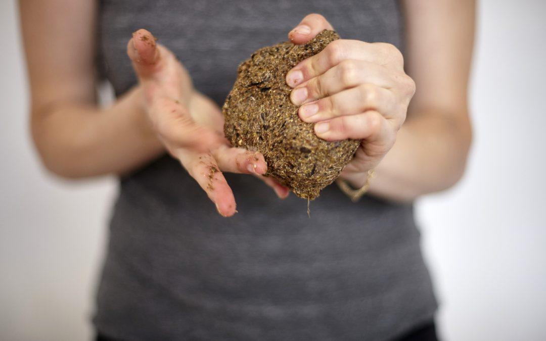 Materialentwicklung aus biologischen Abfällen